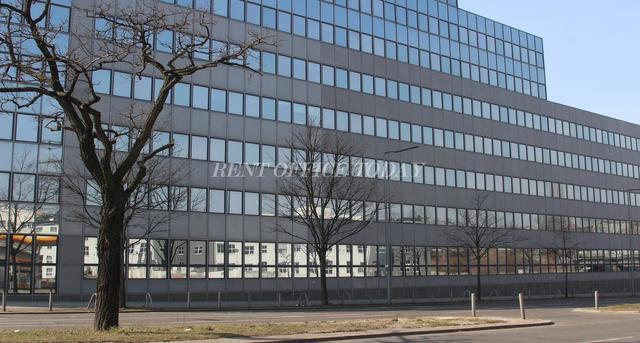 办公室租金 platinum-6