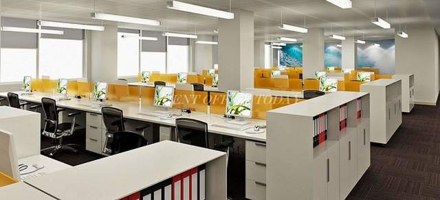 مكتب للايجار pallaunk-5