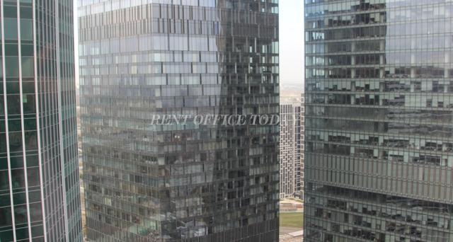 Offices in Federation tower, West building, 44th floor-4