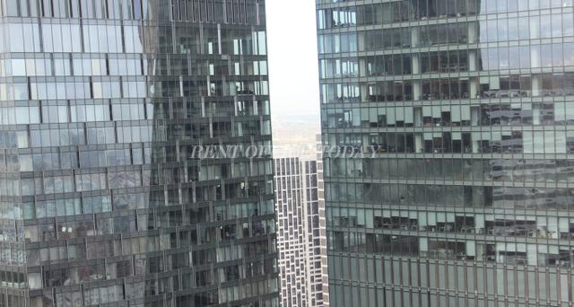 Offices in Federation tower, West building, 44th floor-8